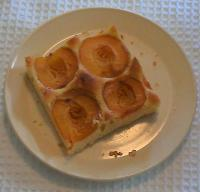 A yummy apricot slice